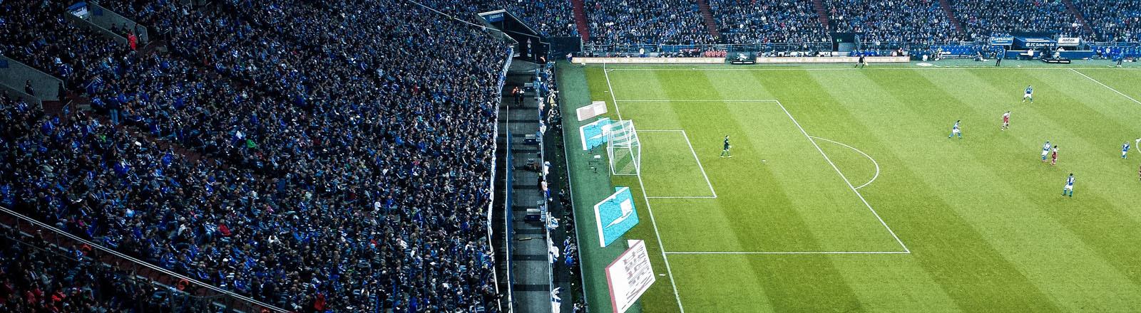 Ausschnitt aus einem Fußballstadion mit Rasen und Tribüne