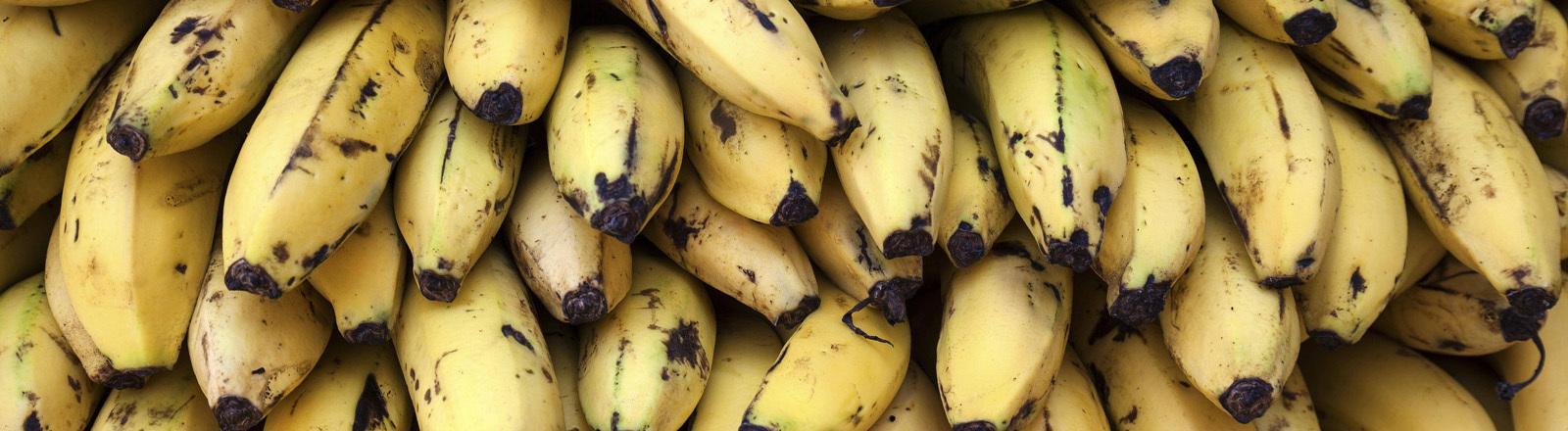 Bananen auf einem Stapel