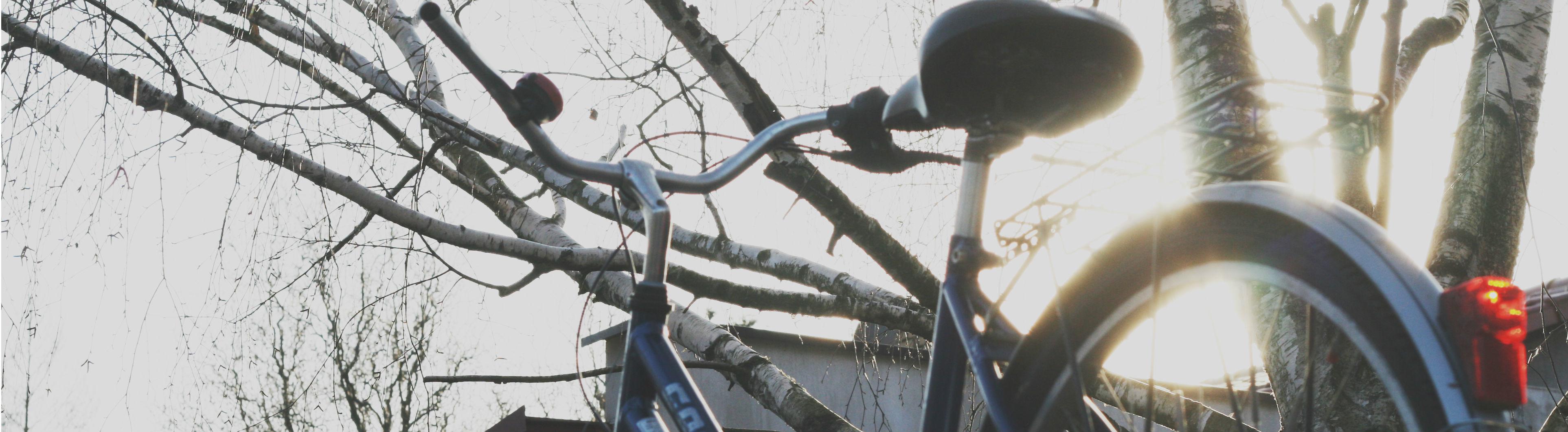 Ein Fahrrad im Gegenlicht