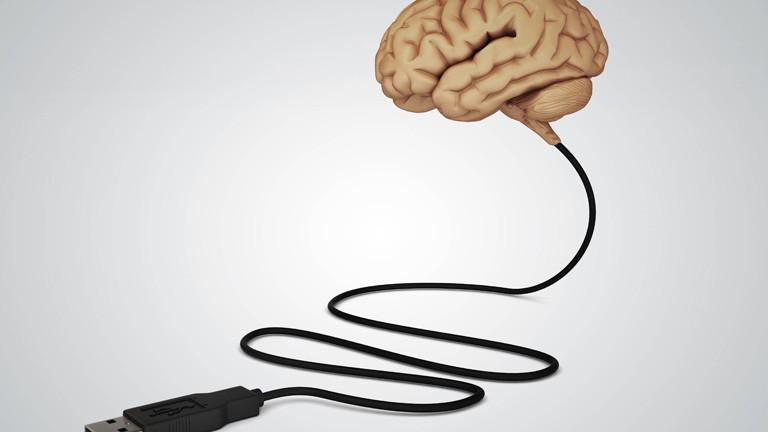 Sprachverlust: Implantat soll Hirnsignale in gesprochene Sprache übersetzen