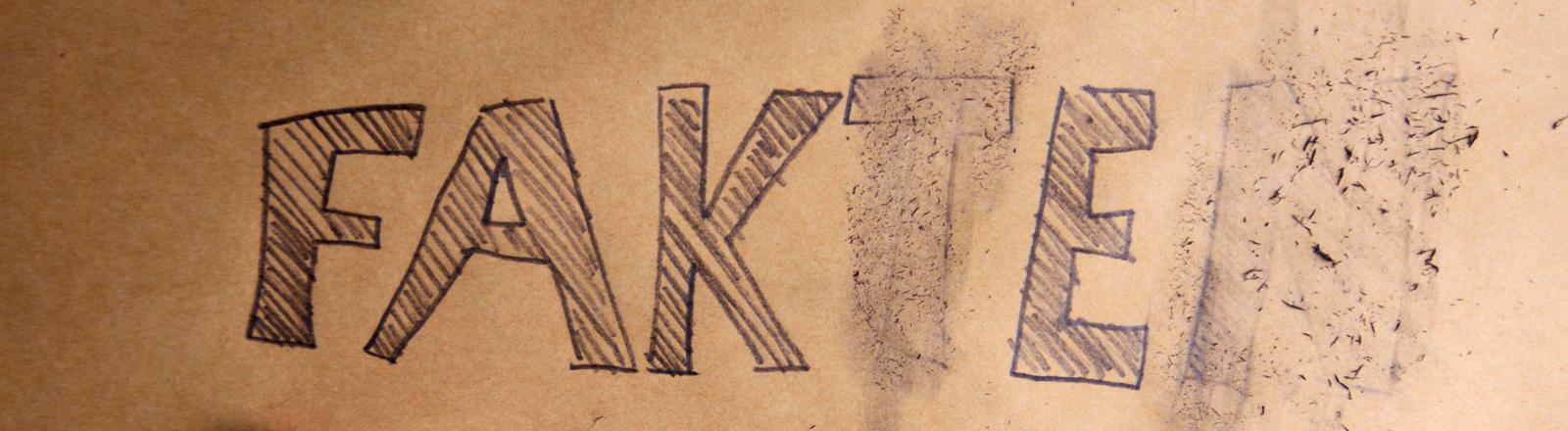 """Schriftzug """"Fakten"""" mit ausradierten Buchtaben T und N"""