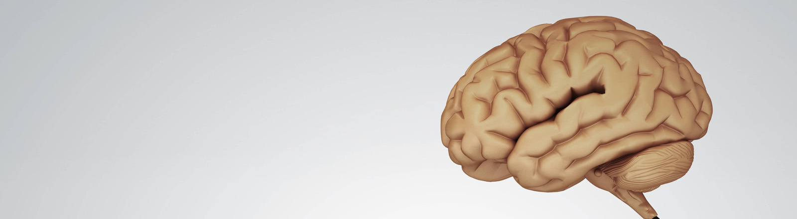 Gehirn an USB-Kabel