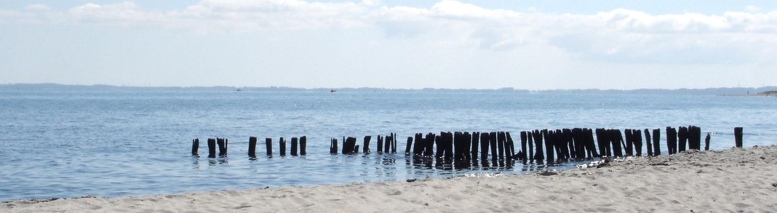 Holzbalken ragen in die Ostsee.