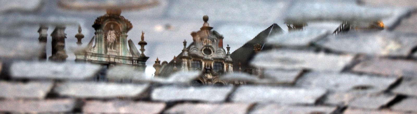 Häuser des zentralen Platzes in Brüssel spiegeln sich in einer Pfütze auf Kopfsteinpflaster.
