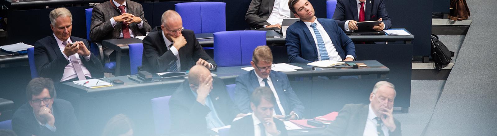 AfD-Bundestagsfraktion 26.09.2019
