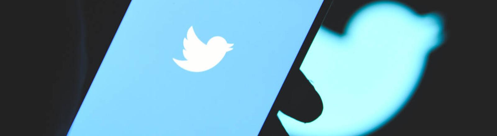 Das Twitter-Logo auf einem Handy.
