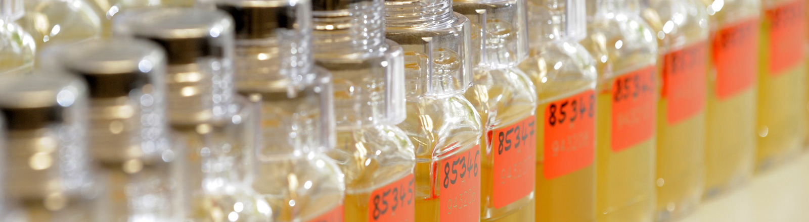 Dopingproben im Doping Labor im Institut für Dopinganalytik und Sportbiochemie (IDAS) in Kreischa, aufgenommen am 01.10.08 (dpa).
