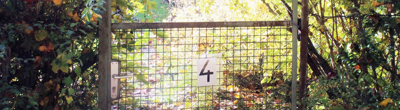 Gartentor Kleingarten
