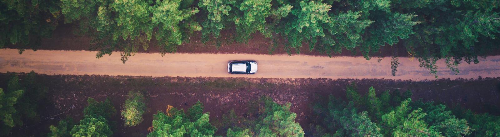 Ein Auto aus der Vogelperspektive fährt über einen Waldweg.
