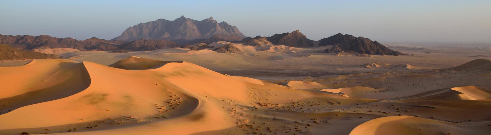 Wüste Algerien