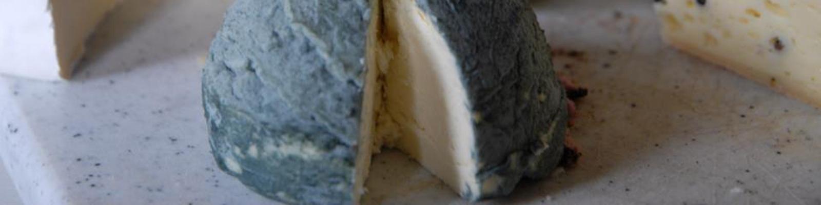 Besondere Käsesorten aus einer Berner Käserei