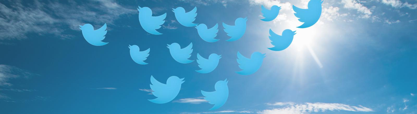 Twitter-Schwarm