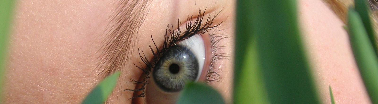 Frau mit weit geöffnetem Auge schaut durch Pflanzenhalme hindurch