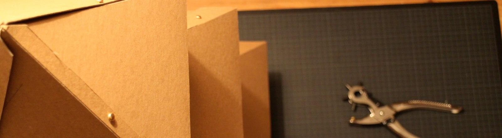 Papptanne von oben