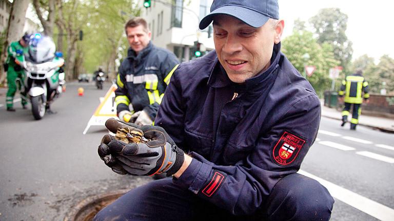 Ein Tierretter kniet auf der Straße. Er hält zwei Entenküken in seinen Händen. Im Hintergrund sind Feuerwehrleute und ein Polizist zu sehen. Ebenso ein Gullydeckel.