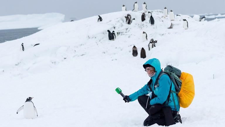 Frau mit einem Pinguin