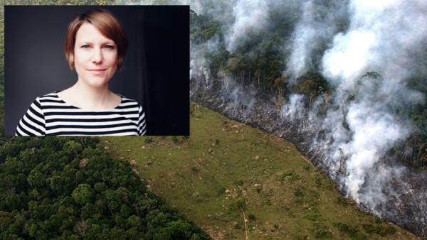 Kathrin Hartmann, Brandrodung im Regenwald