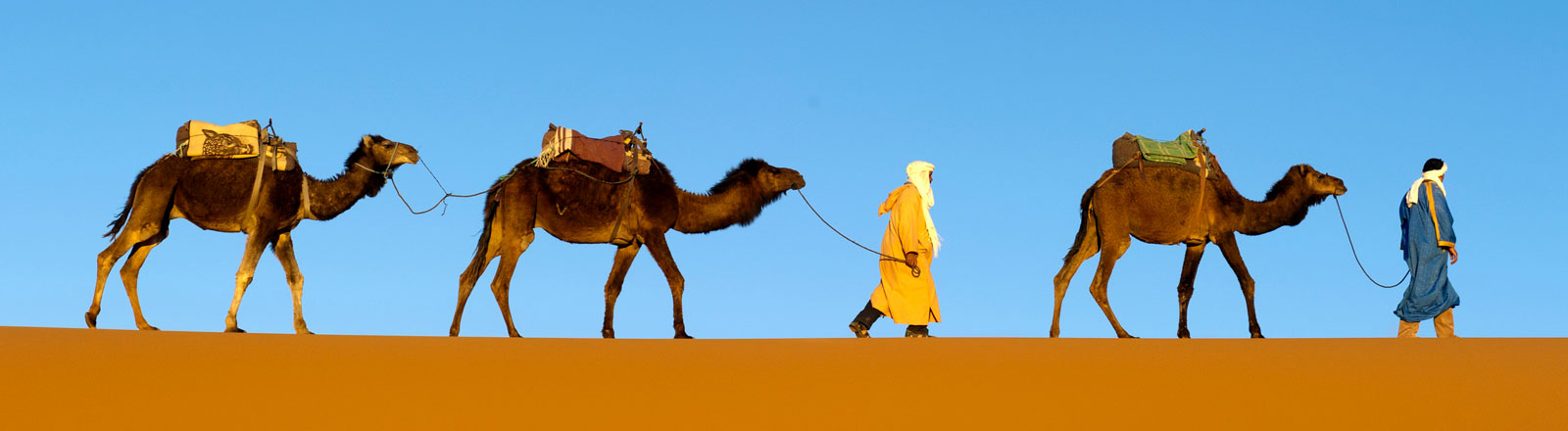 Eine Karawane auf einer Sanddüne