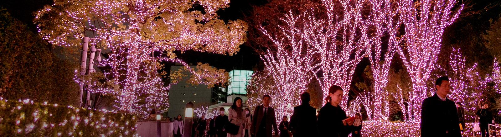 Ein zu Weihnachten geschmückter Park in Japan