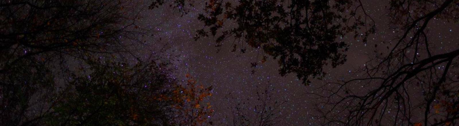 Sternenhimmel über Mitteleuropa
