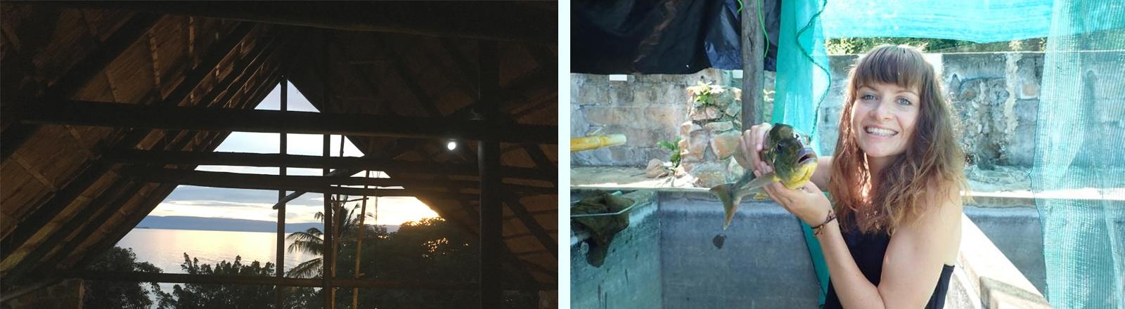 Links: Ausblick aus einem Haus auf den Tanganjikasee, rechts: Die Biologin Carolin Sommer-Trembo hält einen Buntbarsch hoch.