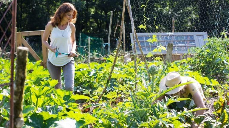 Regine und Anton beim Gemüseanbau