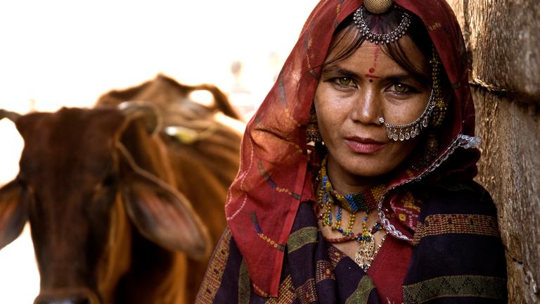 Portrait einer indischen Frau mit Kopfschleier und Gesichtsschmuck.