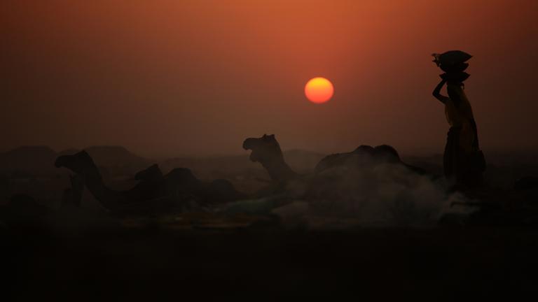 Eine Frau trägt im Gegenlicht des Sonnenuntergangs trägt Kameldung auf dem Kopf.