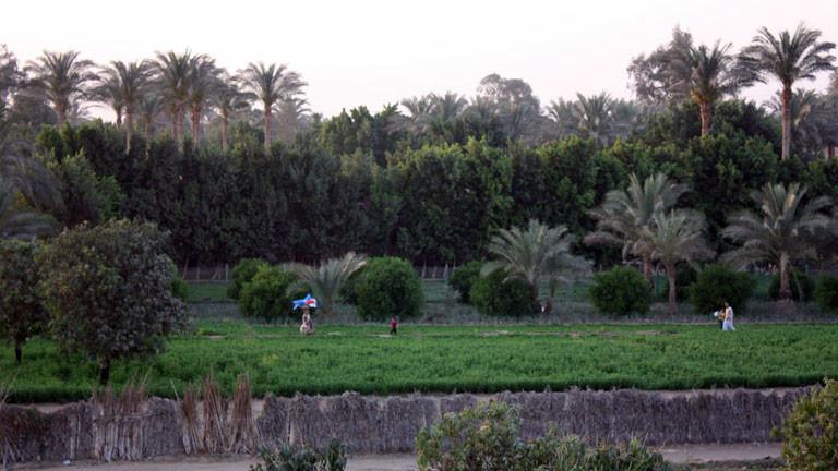 Bauern bestellen Felder in Abusir.