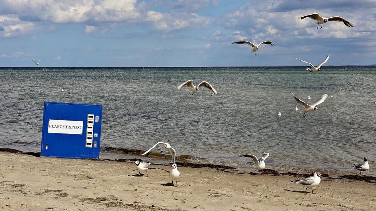 Am Strand fliegen Möwen. Fast am Wasser liegt eine blauer Automat auf dem steht Flaschenpost.
