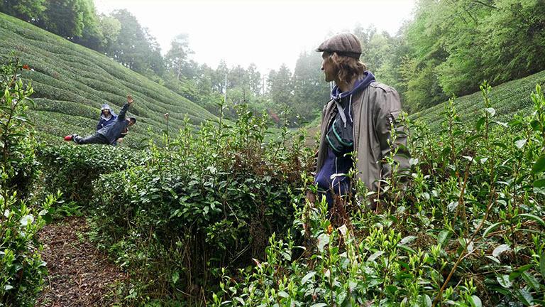Teeplantage Japan Ueda
