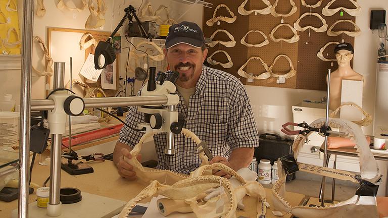 Erich Ritter untersucht Gebisse von Haien.