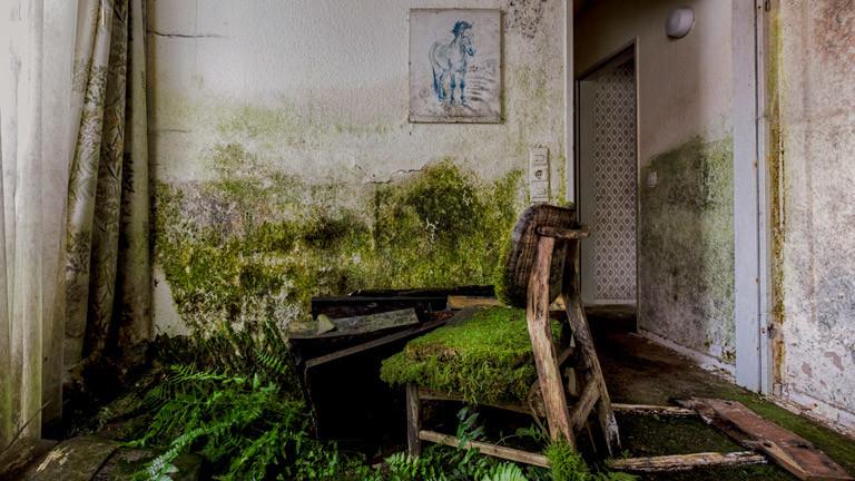 Ein zerfallenes, altes Gebäude, Innenansicht
