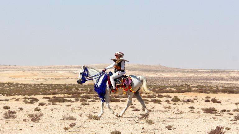 Falknerin Laura Wrede reitet auf einem Pferd mir Falken