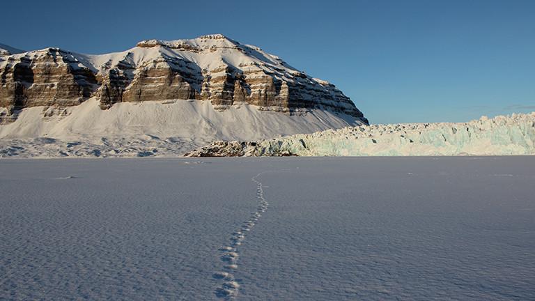 Blick auf verschneite Berge und unglaublich viel Schnee mit einer Spur von Fußabdrücken; das Foto von der Arktis hat Sybille Klenzendorf gemacht.