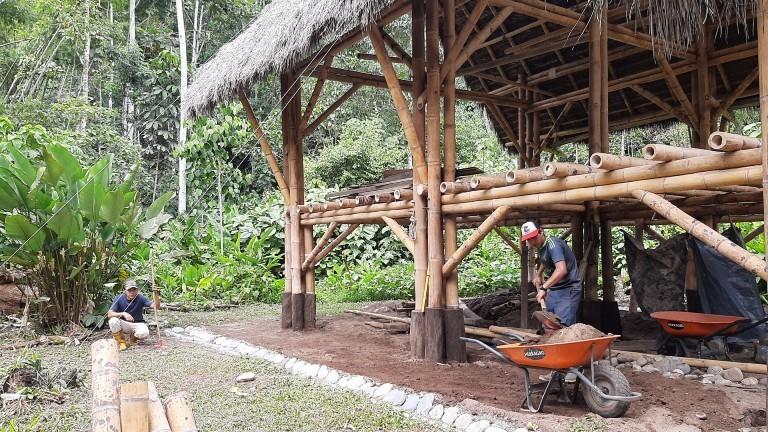 Theresa und ihr Freund Tovias bauen nachhaltige Unterkünfte im Regenwald