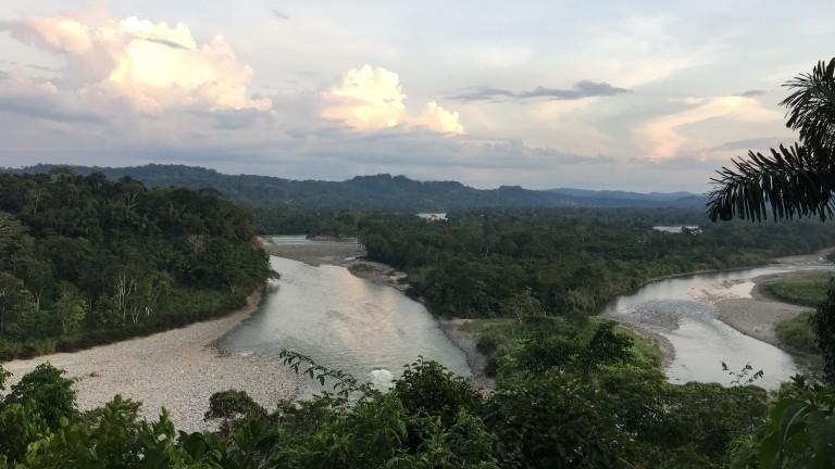 Fluss in Ecuador, Regenwald