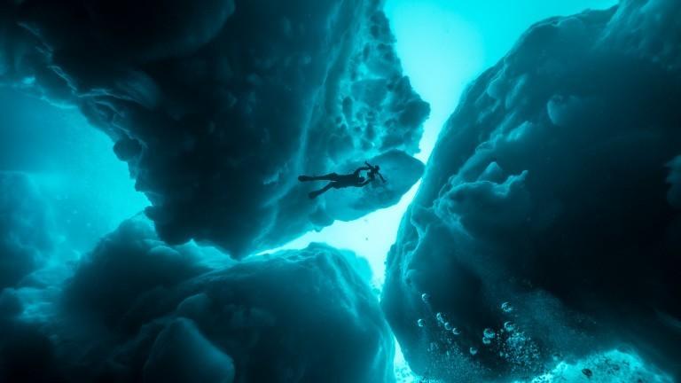 Unterwasser Kamerafrau Christina Karliczek taucht zwischen Eisbergen auf der Suche nach Eishaien.