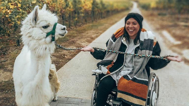 Mit Lama am Rande des Pfälzer Waldes