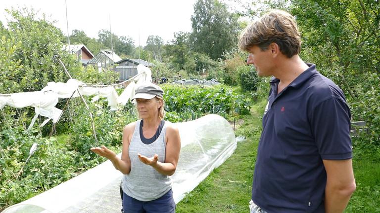 Mann und Frau in einem Garten.