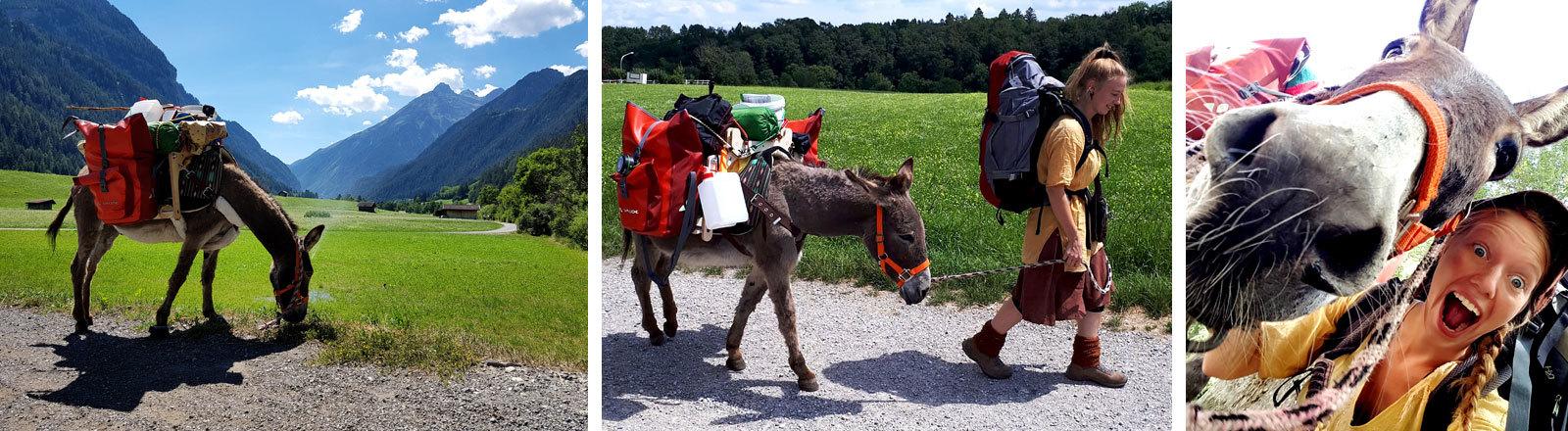 Lotta Lubkoll reist mit einem Esel.