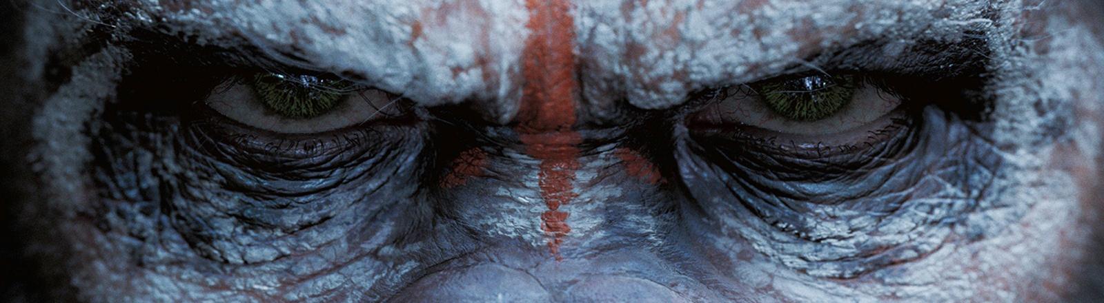 """Das Filmplakat zu """"Planet der Affen"""" zeigt das Gesicht eines Affen mit Kriegsbemalung."""