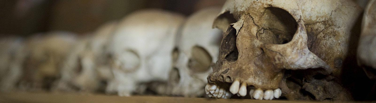 Schädel von ermordeten Tutsi auf einem Regalbrett.