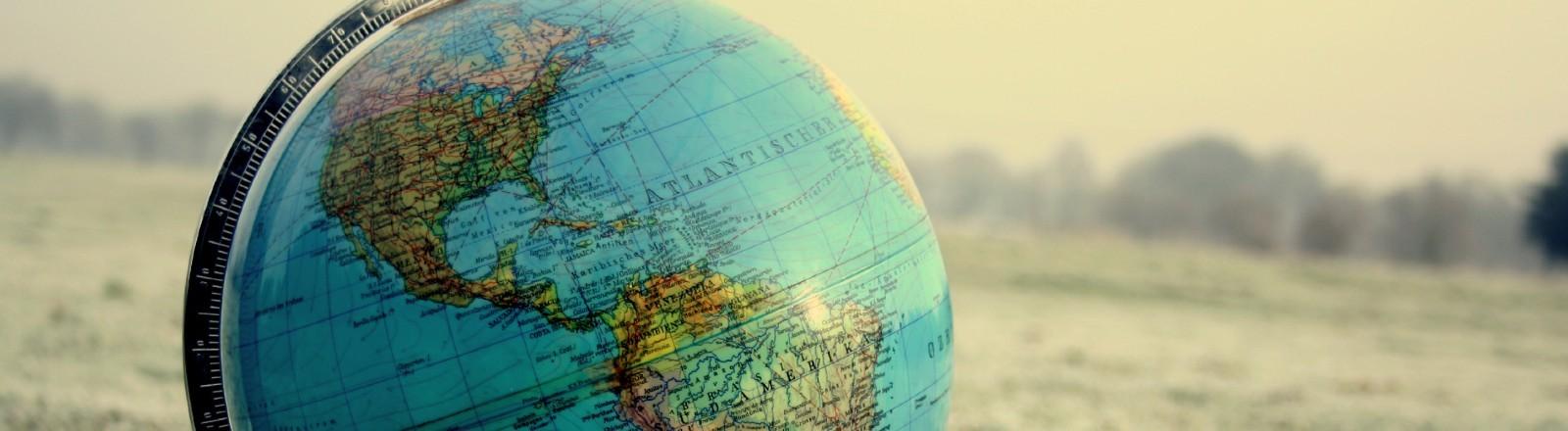 Ein Globus steht auf einer vereisten Wiese.