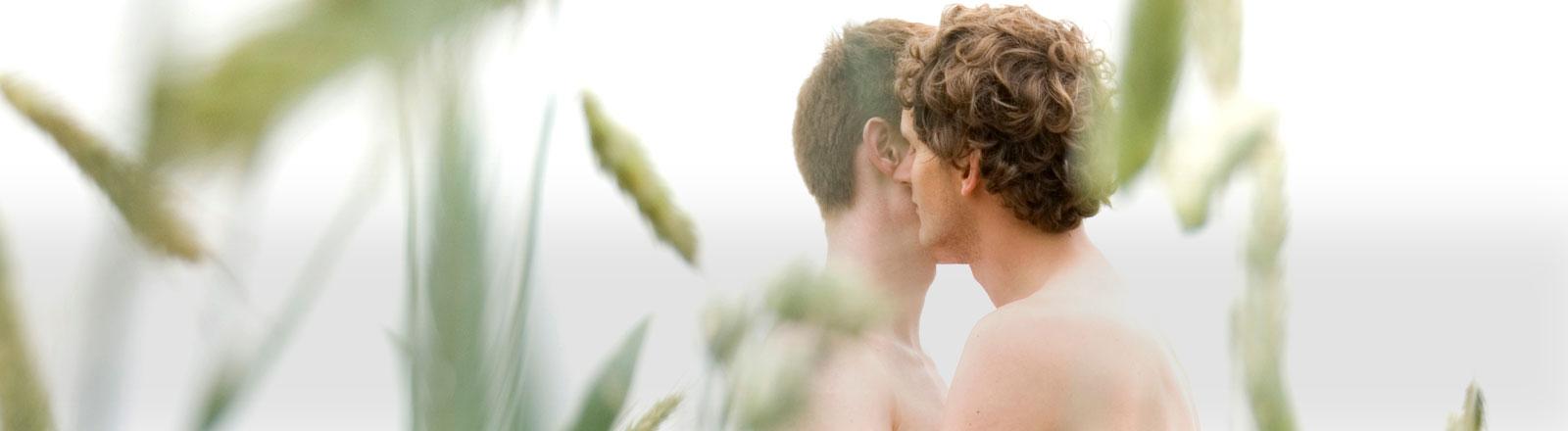 Zwei Männer stehen im Feld und küssen sich.