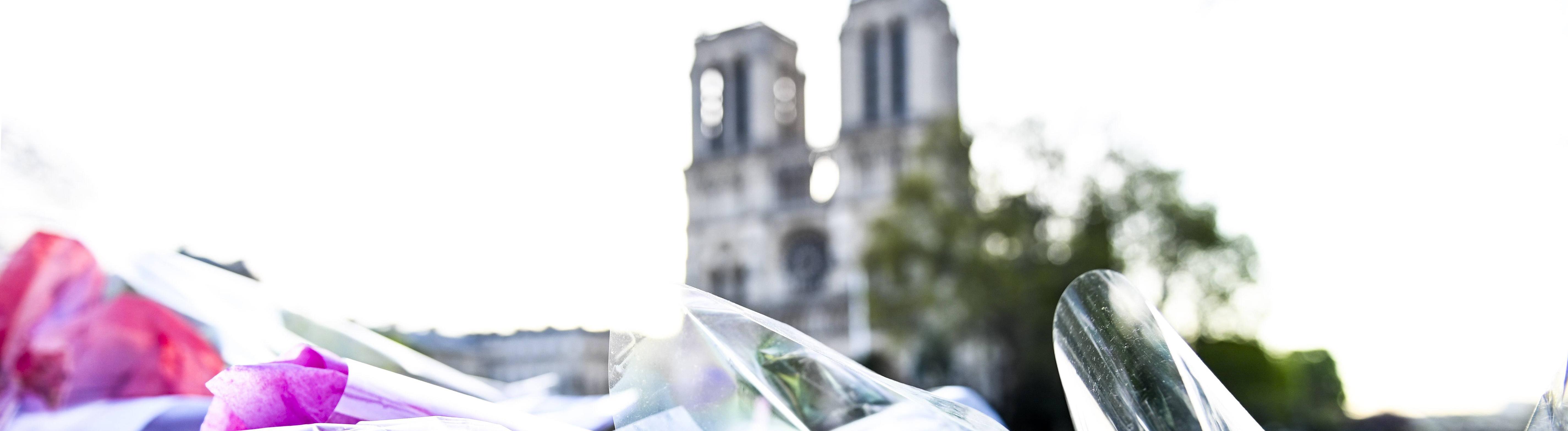Blumen vor Notre-Dame
