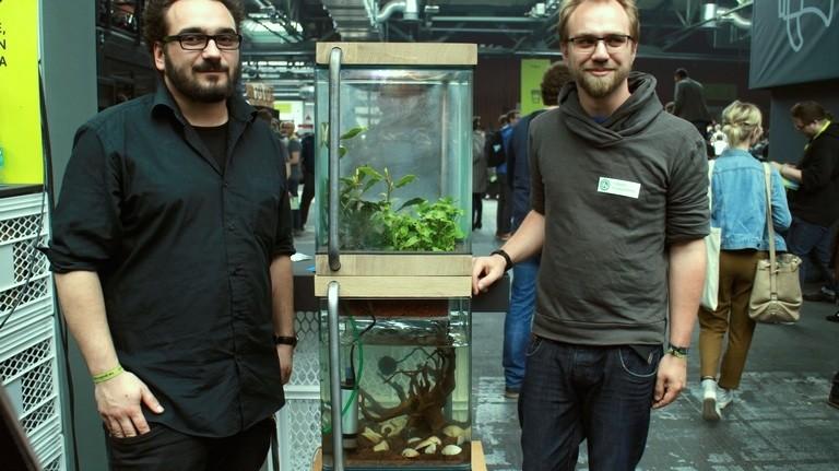 05 Martin und Frank kombinieren in ihrem aquaponischen Garten die Fisch- und Pflanzenzucht