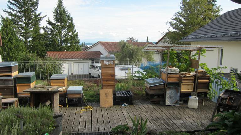 Die Heimat von Siggi Wehrles Bienenvölkern