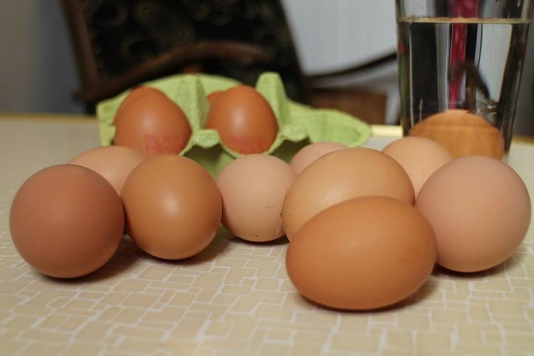 Einen Schwung frischer Eier nimmt Moritz mit nach Berlin.