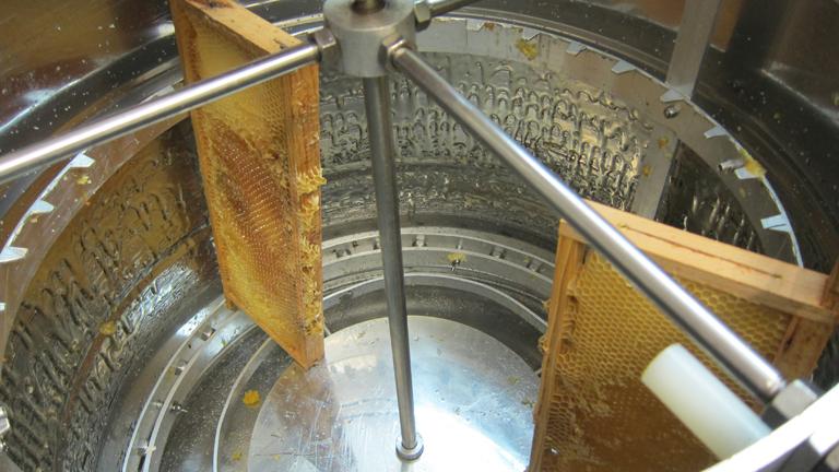 Dann wird der Honig ausgeschleudert